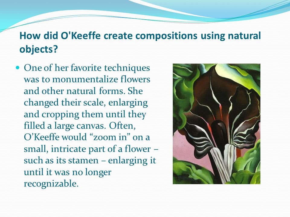 How did O Keeffe create compositions using natural objects