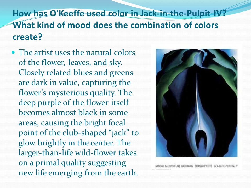 How has O Keeffe used color in Jack-in-the-Pulpit IV