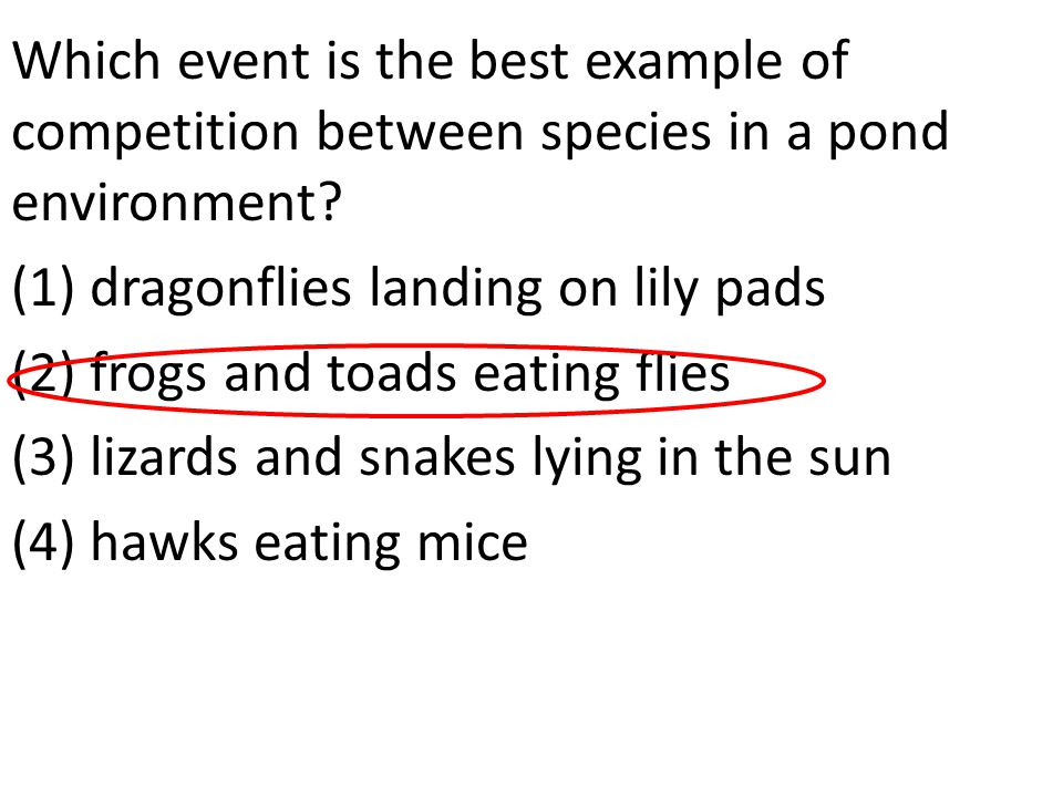 Which event is the best example of competition between species in a pond environment.