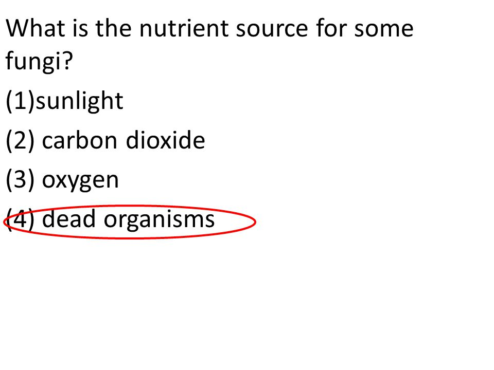 What is the nutrient source for some fungi