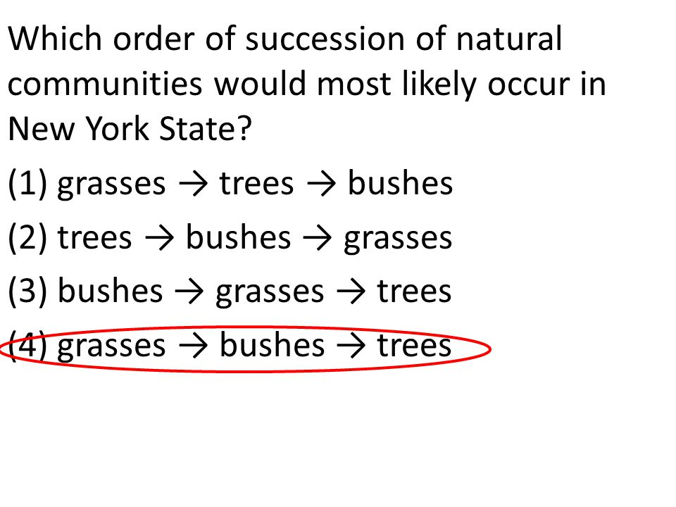 Which order of succession of natural communities would most likely occur in New York State.