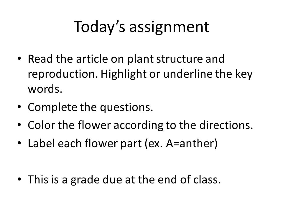 Today's assignment Read the article on plant structure and reproduction. Highlight or underline the key words.