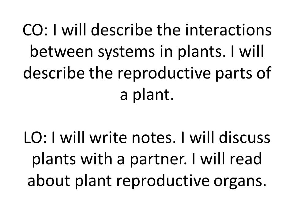 CO: I will describe the interactions between systems in plants
