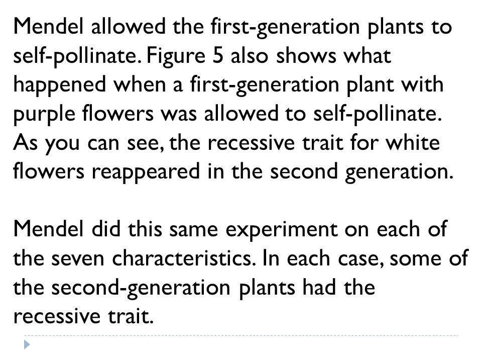 Mendel allowed the first-generation plants to self-pollinate