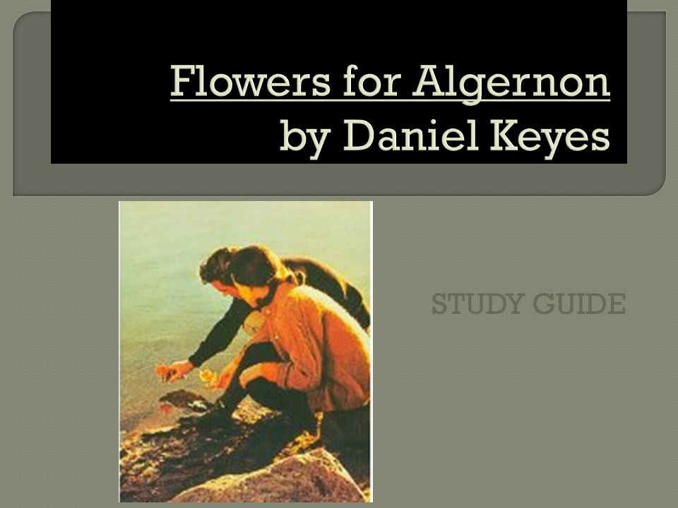 flowers for algernon by daniel keyes ppt  study guide flowers for algernon by daniel keyes
