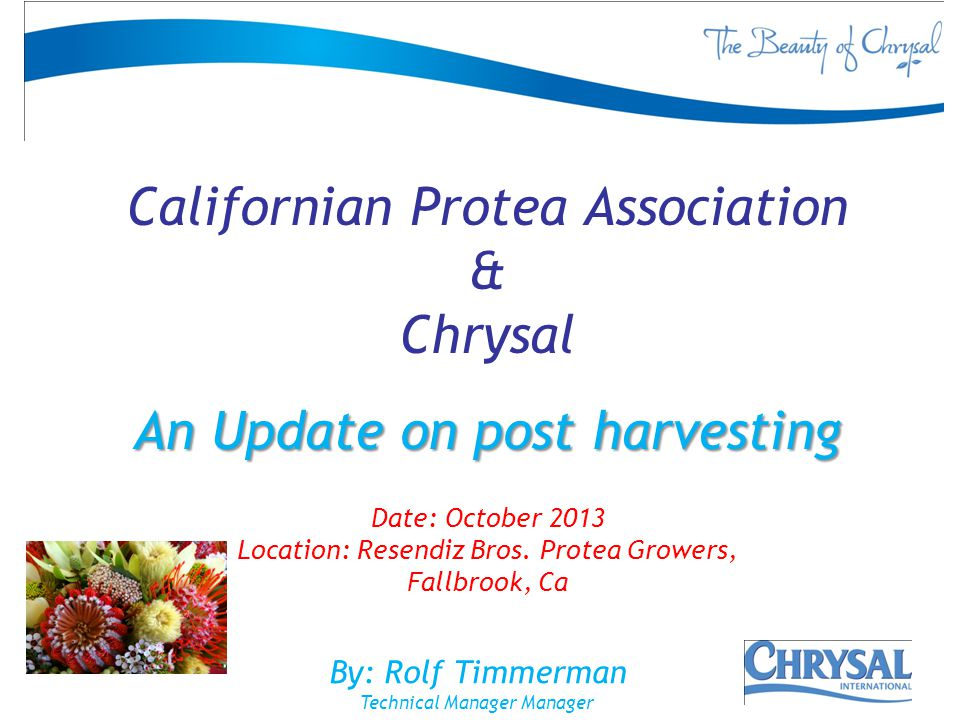 Californian Protea Association & Chrysal An Update on post harvesting