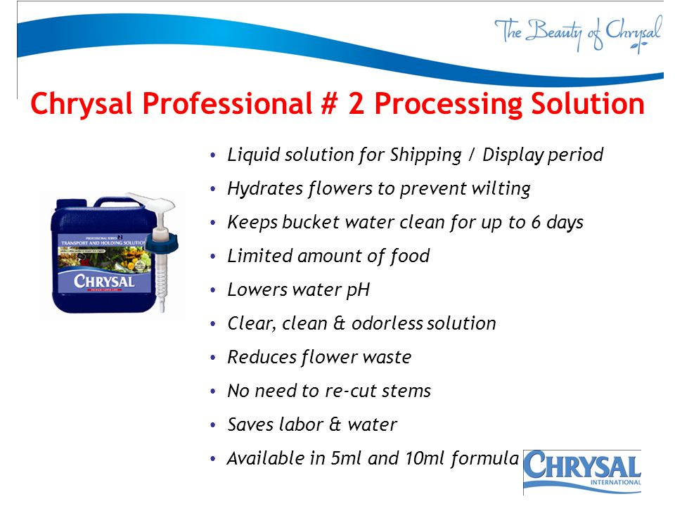 Chrysal Professional # 2 Processing Solution