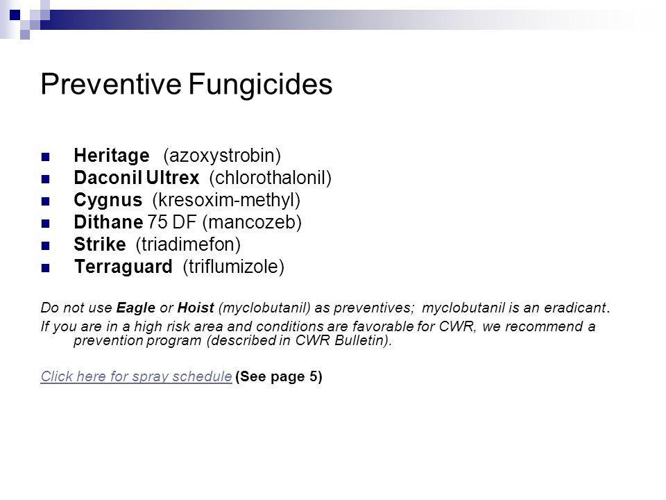Preventive Fungicides