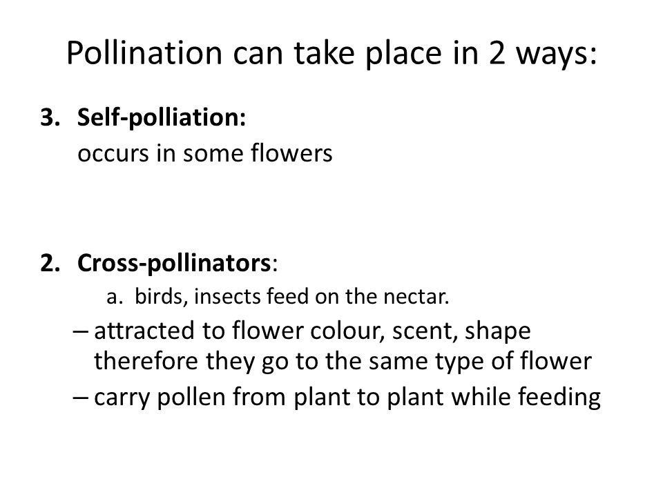 Pollination can take place in 2 ways: