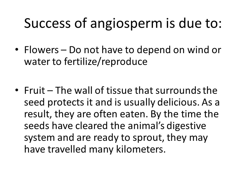 Success of angiosperm is due to: