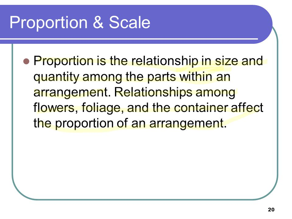 Proportion & Scale