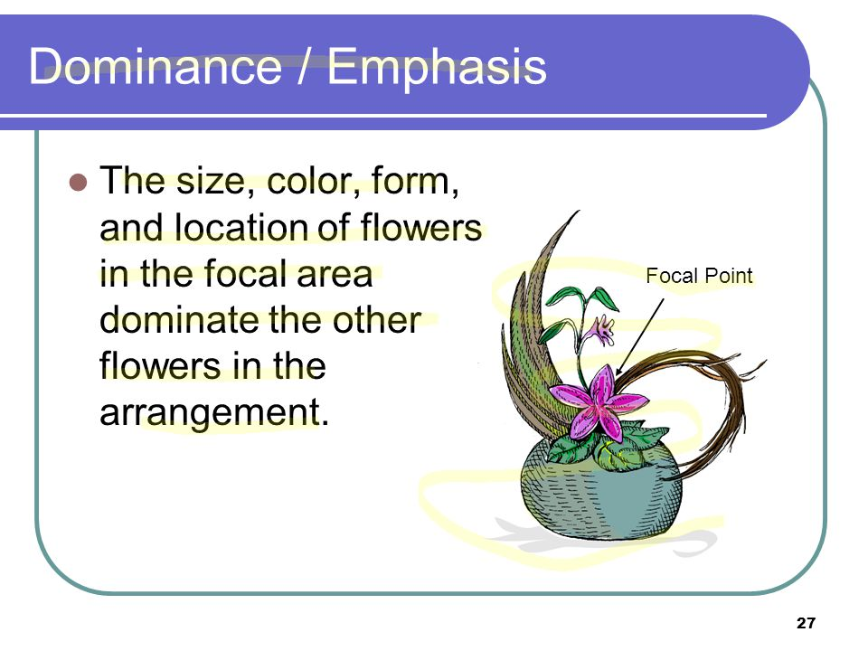 Dominance / Emphasis The size, color, form, and location of flowers in the focal area dominate the other flowers in the arrangement.