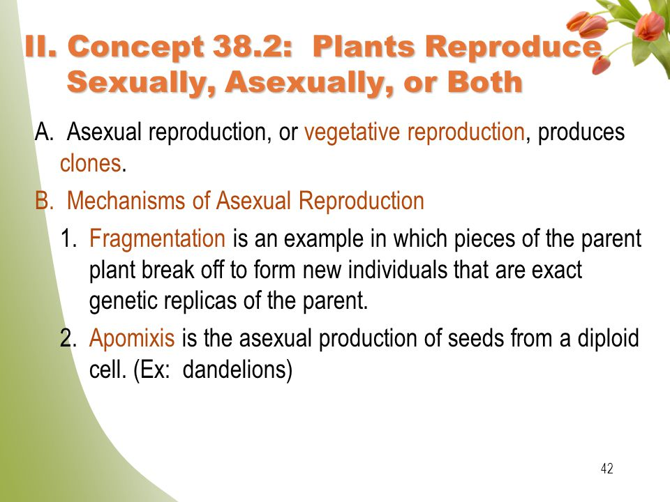 II. Concept 38.2: Plants Reproduce Sexually, Asexually, or Both