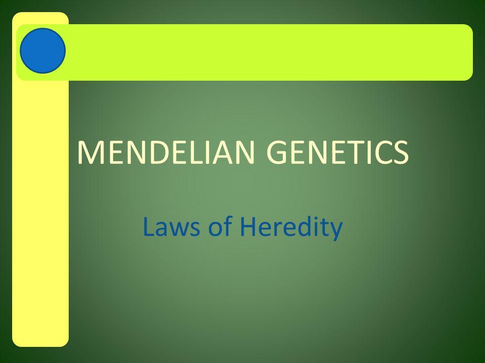 MENDELIAN GENETICS Laws of Heredity