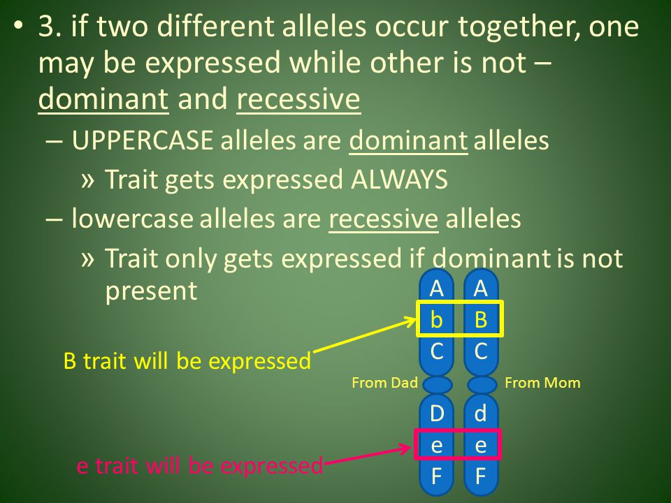 3. if two different alleles occur together, one may be expressed while other is not – dominant and recessive