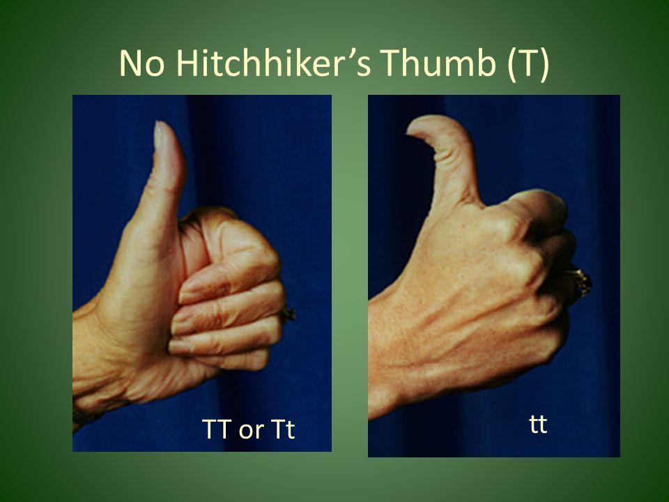 No Hitchhiker's Thumb (T)