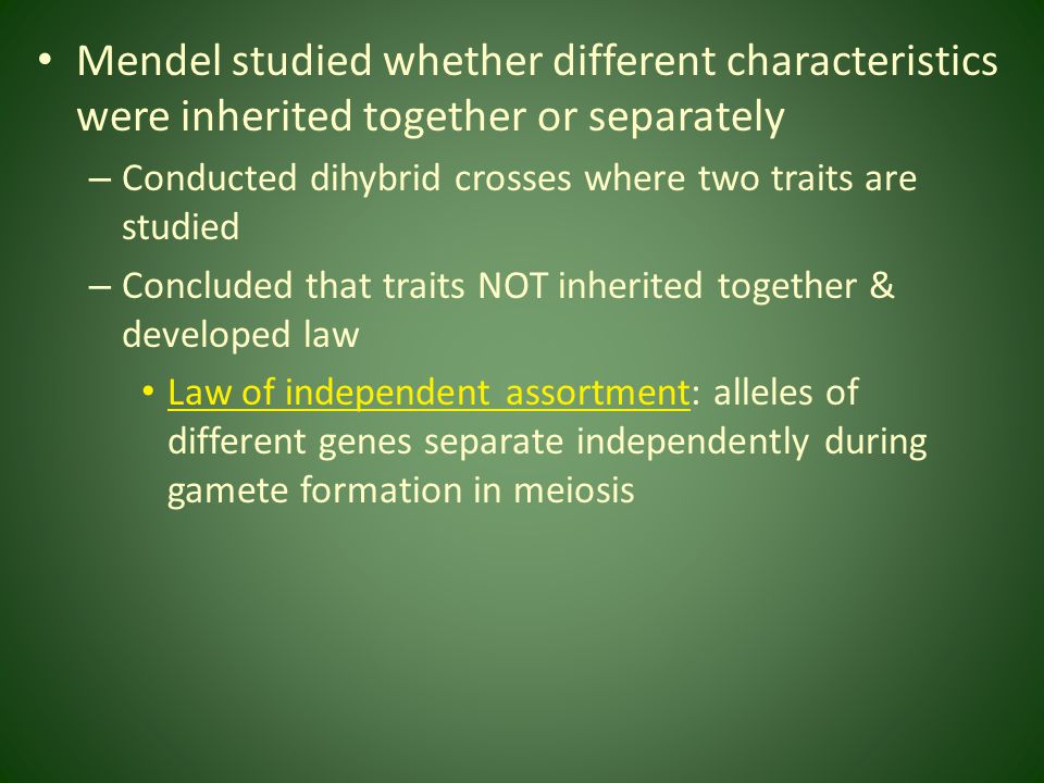 Mendel studied whether different characteristics were inherited together or separately