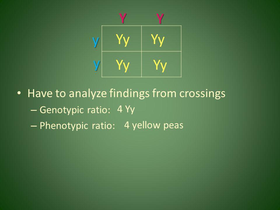 Y Y y Yy Yy y Yy Yy Have to analyze findings from crossings