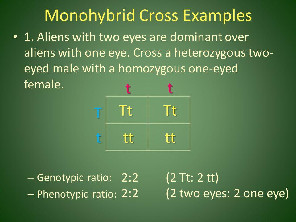 Monohybrid Cross Examples