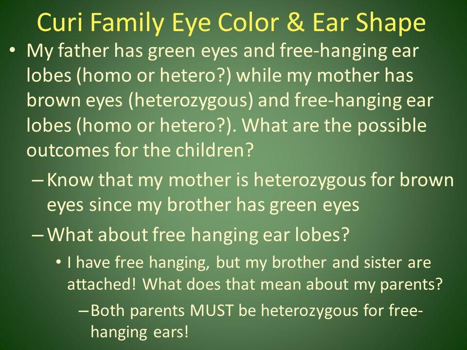 Curi Family Eye Color & Ear Shape