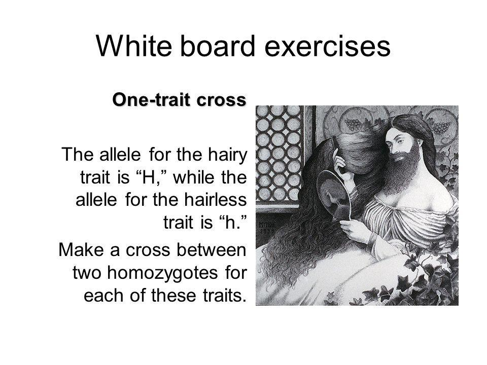 White board exercises One-trait cross