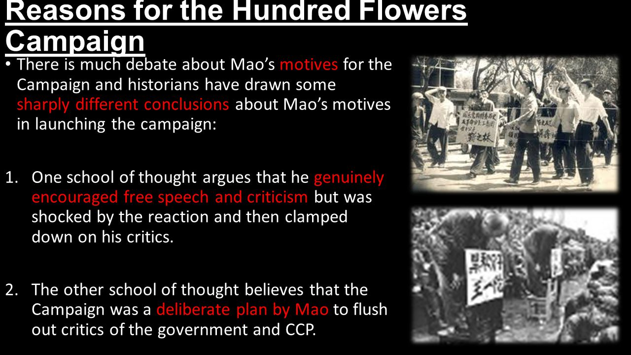 Reasons for the Hundred Flowers Campaign