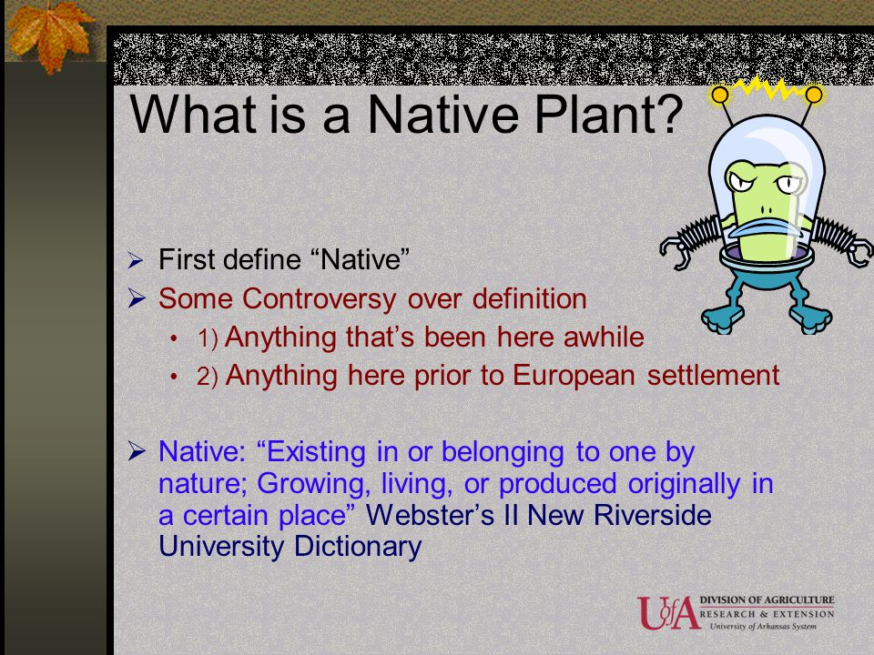 What is a Native Plant First define Native