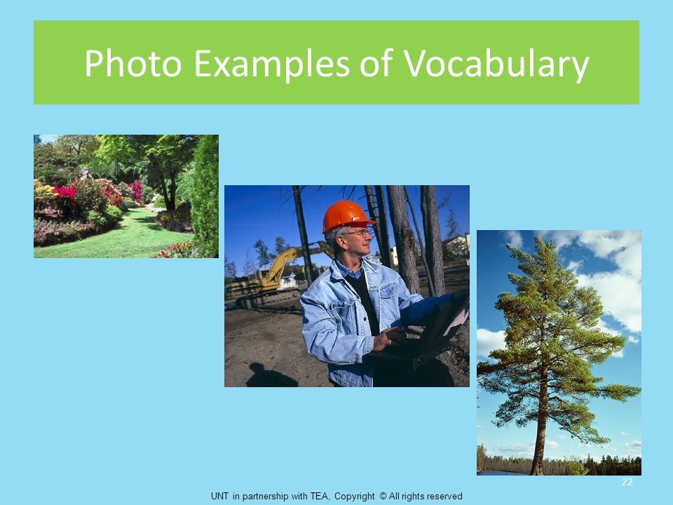 Photo Examples of Vocabulary