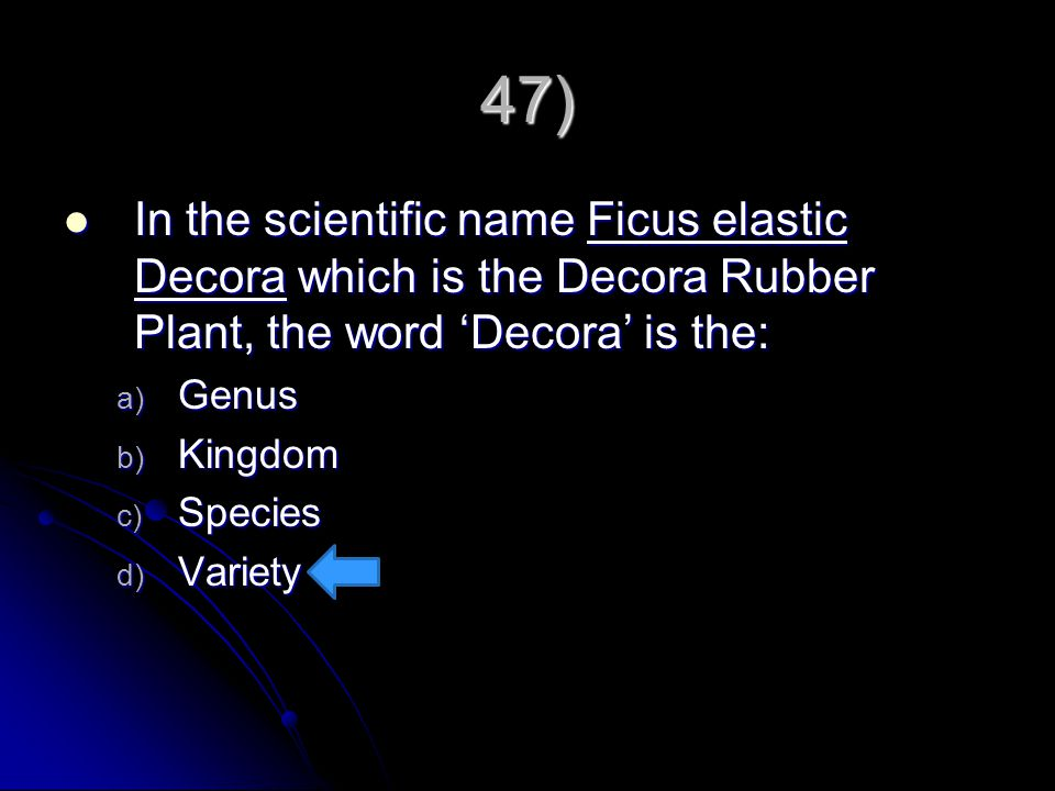 47) In the scientific name Ficus elastic Decora which is the Decora Rubber Plant, the word 'Decora' is the: