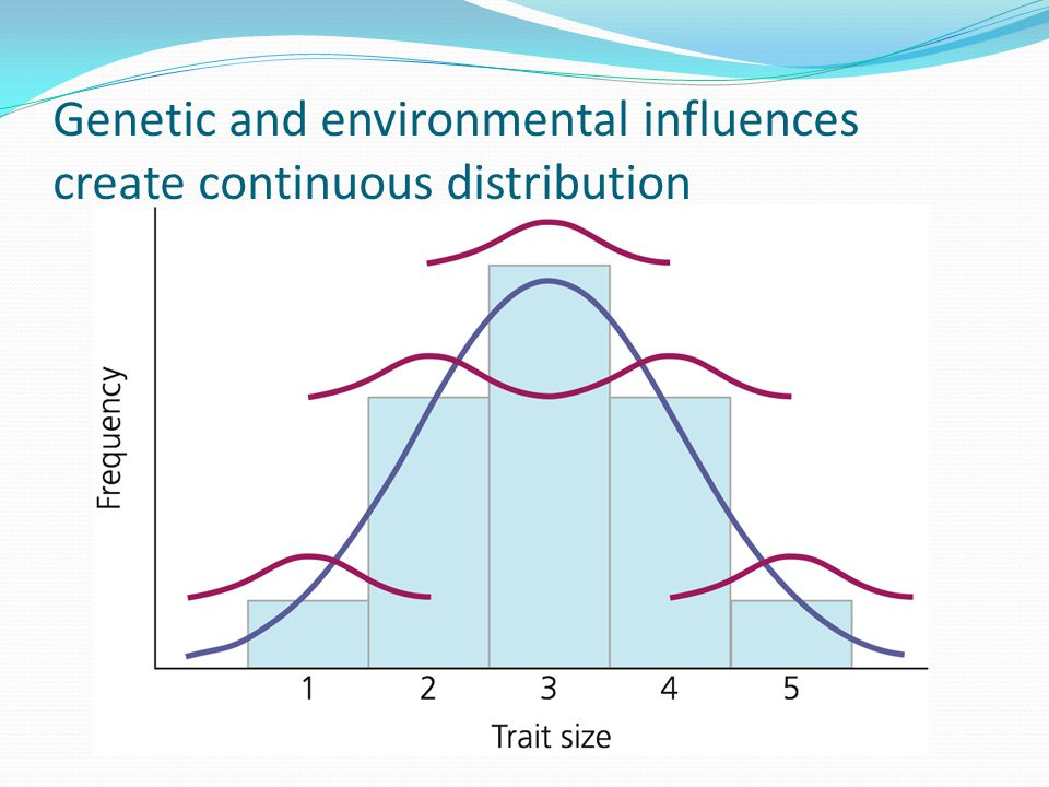 Genetic and environmental influences create continuous distribution
