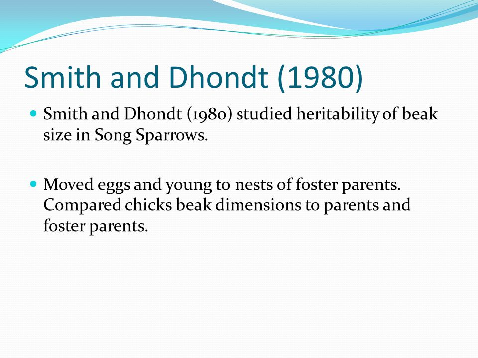 Smith and Dhondt (1980) Smith and Dhondt (1980) studied heritability of beak size in Song Sparrows.