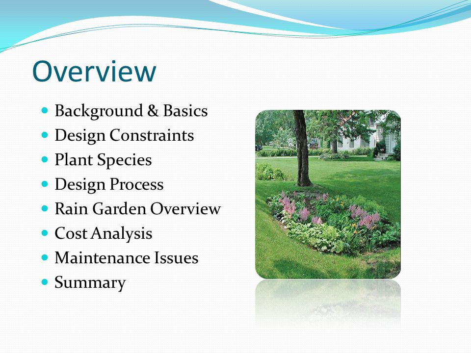 Overview Background & Basics Design Constraints Plant Species