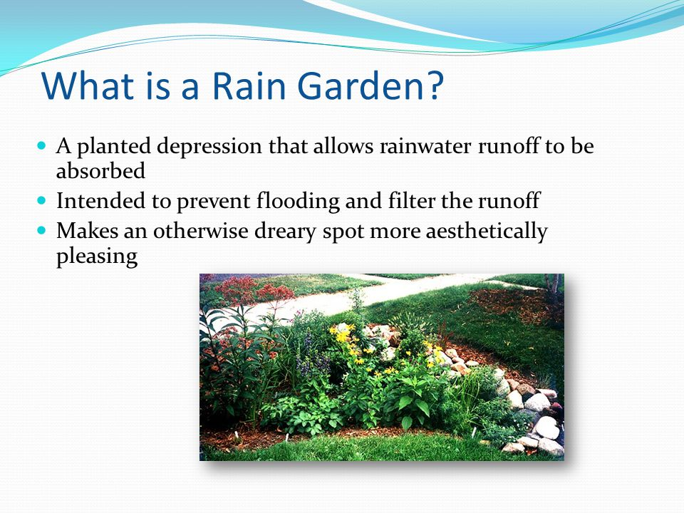 What is a Rain Garden A planted depression that allows rainwater runoff to be absorbed. Intended to prevent flooding and filter the runoff.