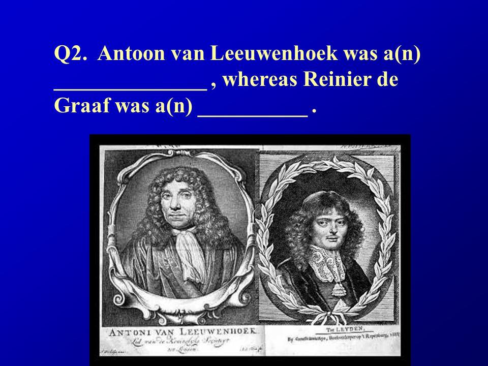 Q2. Antoon van Leeuwenhoek was a(n) ______________ , whereas Reinier de Graaf was a(n) __________ .