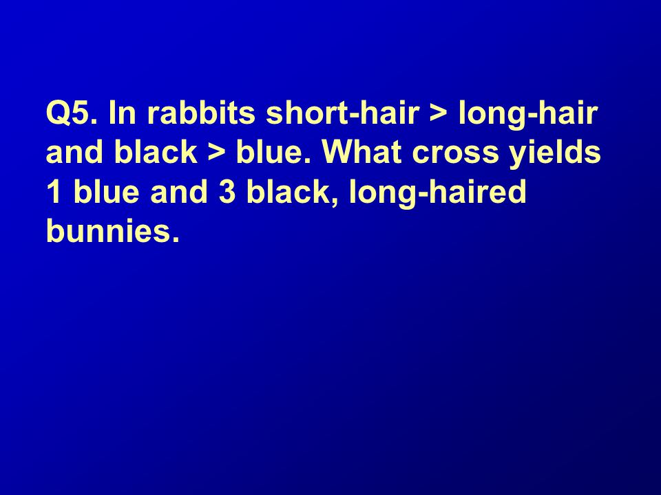 Q5. In rabbits short-hair > long-hair and black > blue