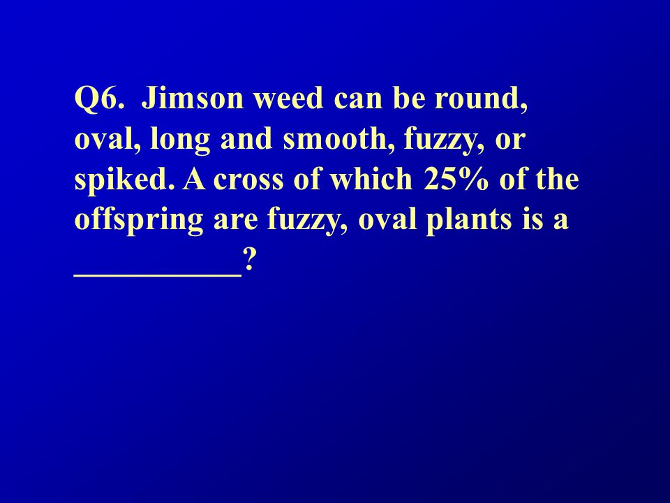 Q6. Jimson weed can be round, oval, long and smooth, fuzzy, or spiked