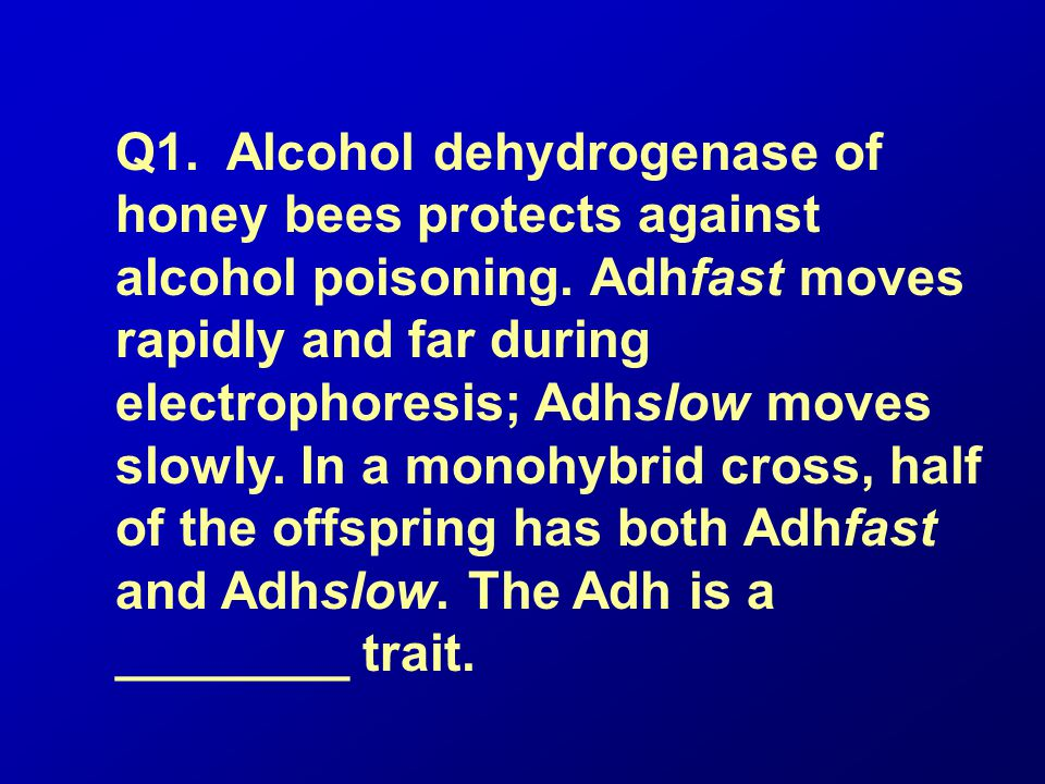 Q1. Alcohol dehydrogenase of honey bees protects against alcohol poisoning.