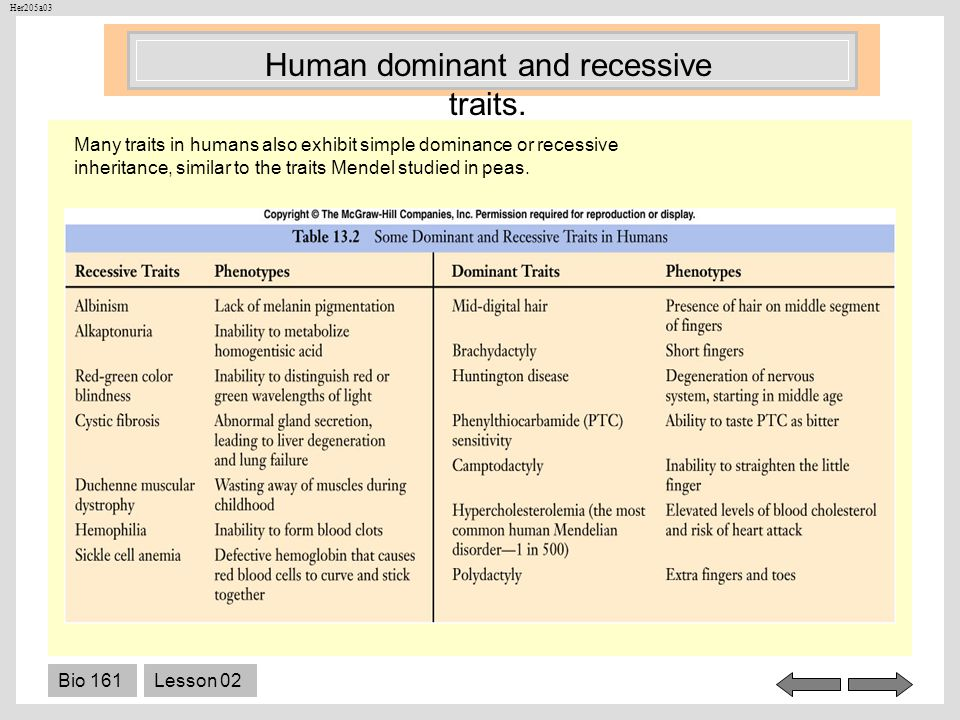 Human dominant and recessive traits.