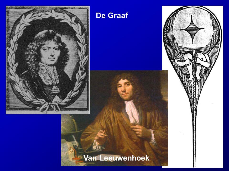 De Graaf Van Leeuwenhoek