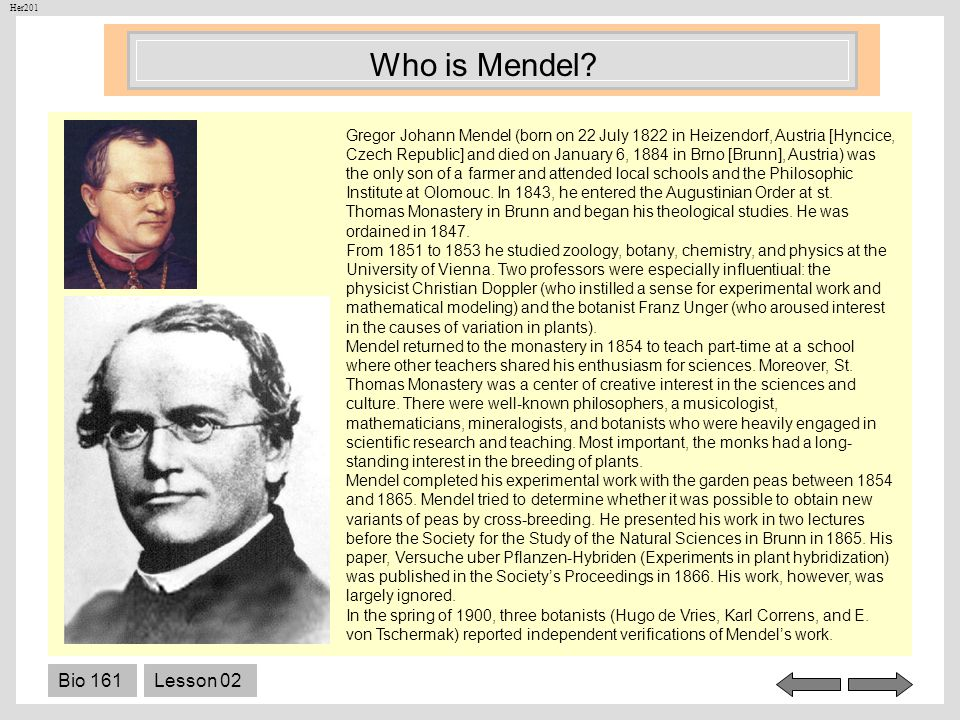 Who is Mendel Bio 161 Lesson 02