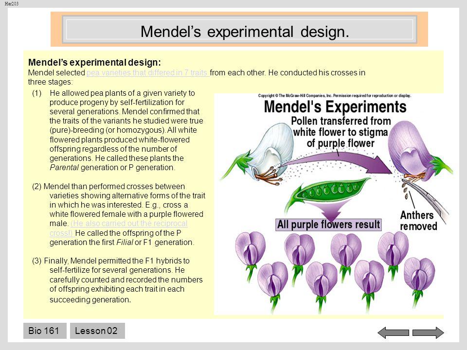 Mendel's experimental design.