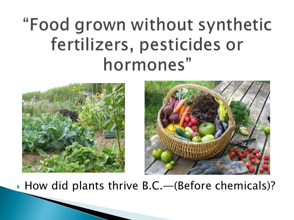 Food grown without synthetic fertilizers, pesticides or hormones