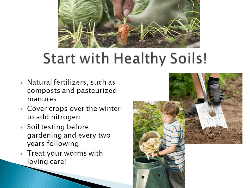 Start with Healthy Soils!