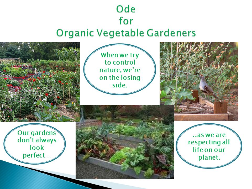 Ode for Organic Vegetable Gardeners