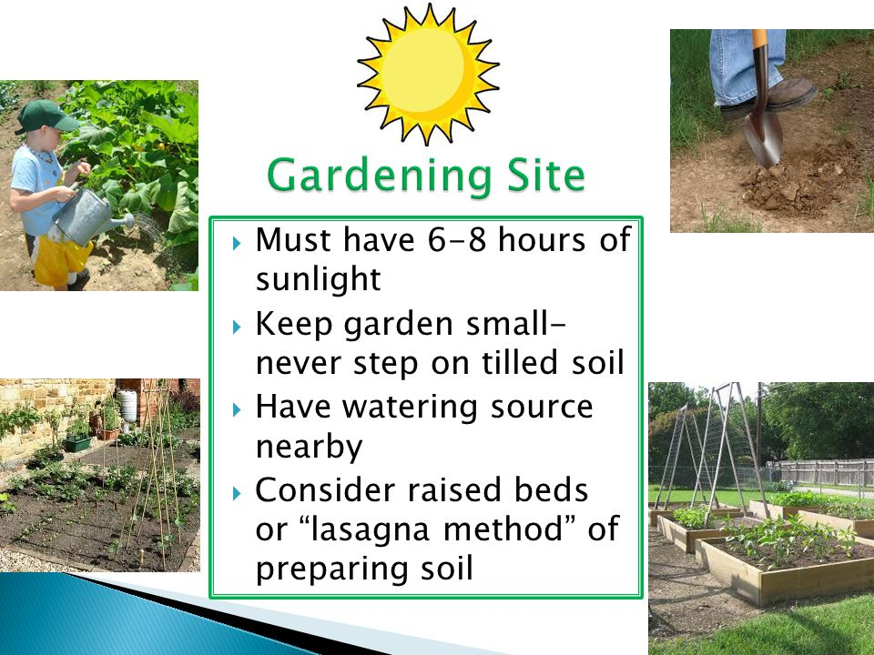 Gardening Site Must have 6-8 hours of sunlight