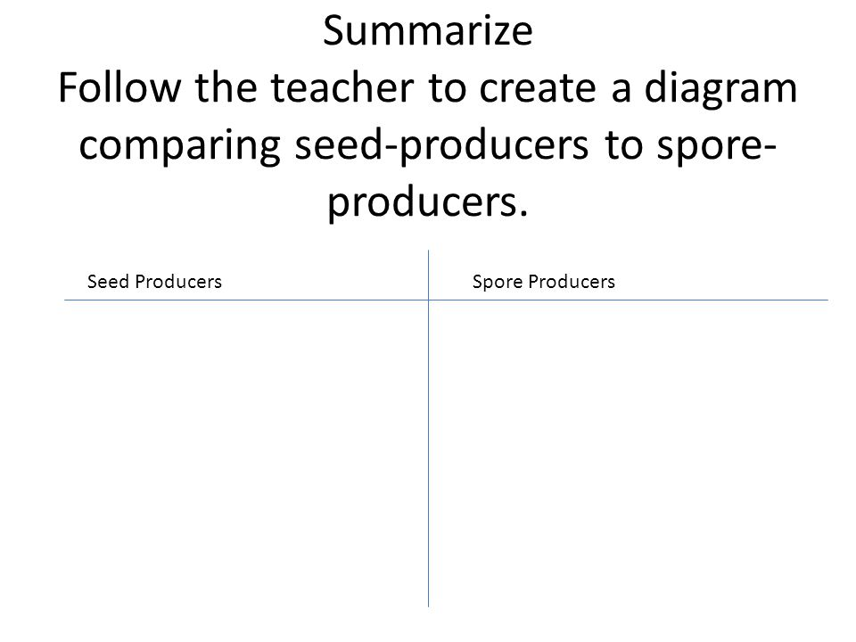 Summarize Follow the teacher to create a diagram comparing seed-producers to spore-producers.