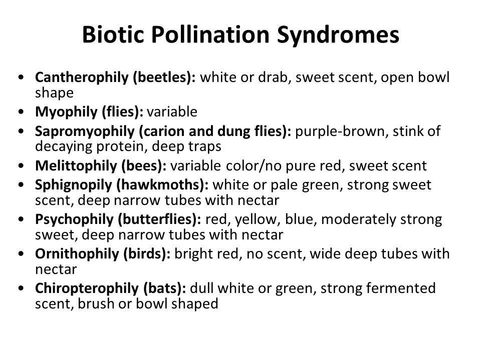 Biotic Pollination Syndromes