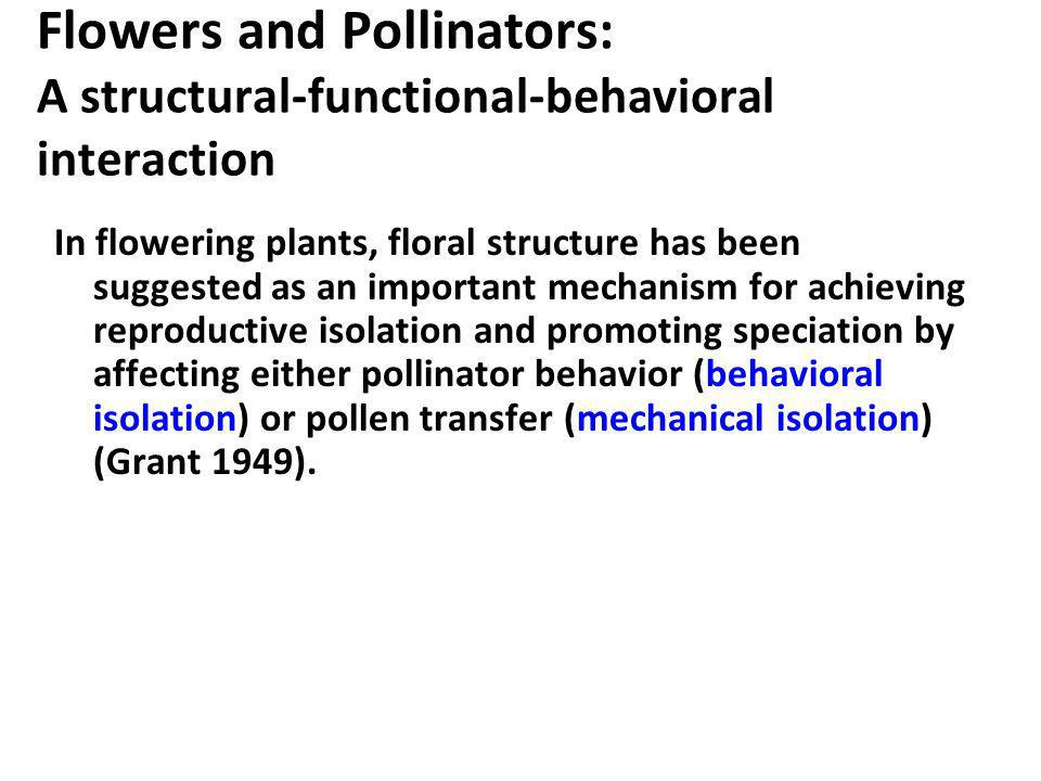 Flowers and Pollinators: A structural-functional-behavioral interaction