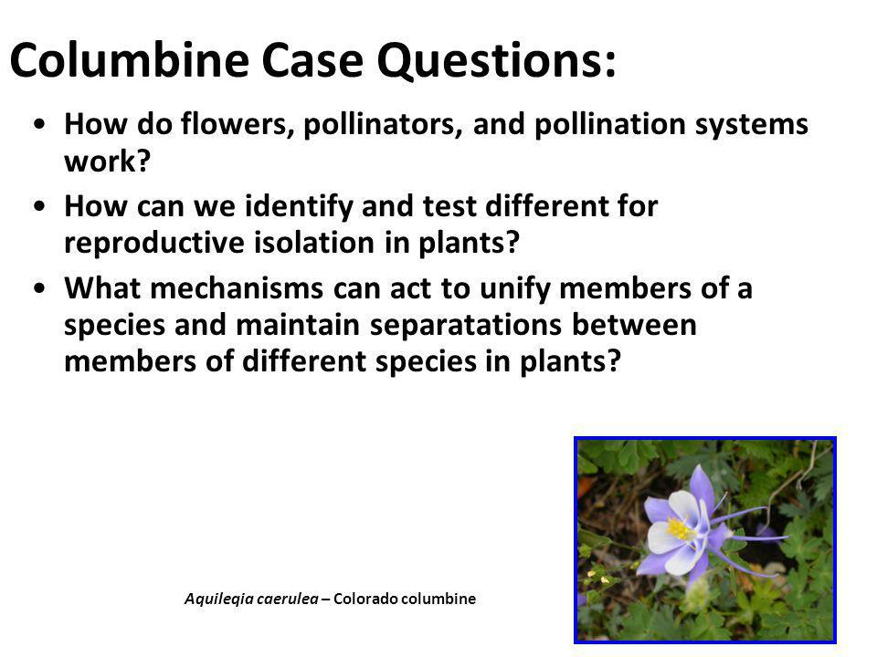 Columbine Case Questions: