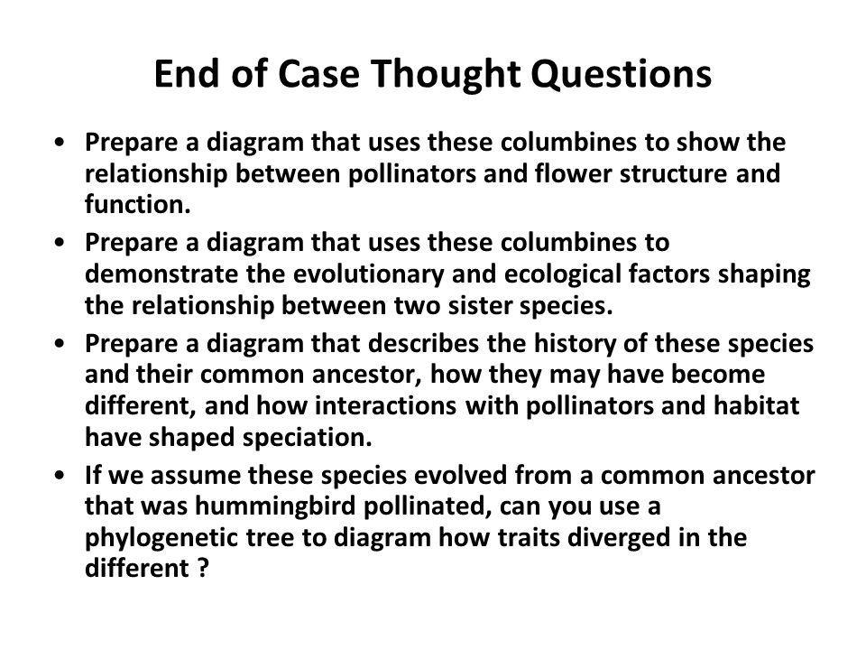 End of Case Thought Questions